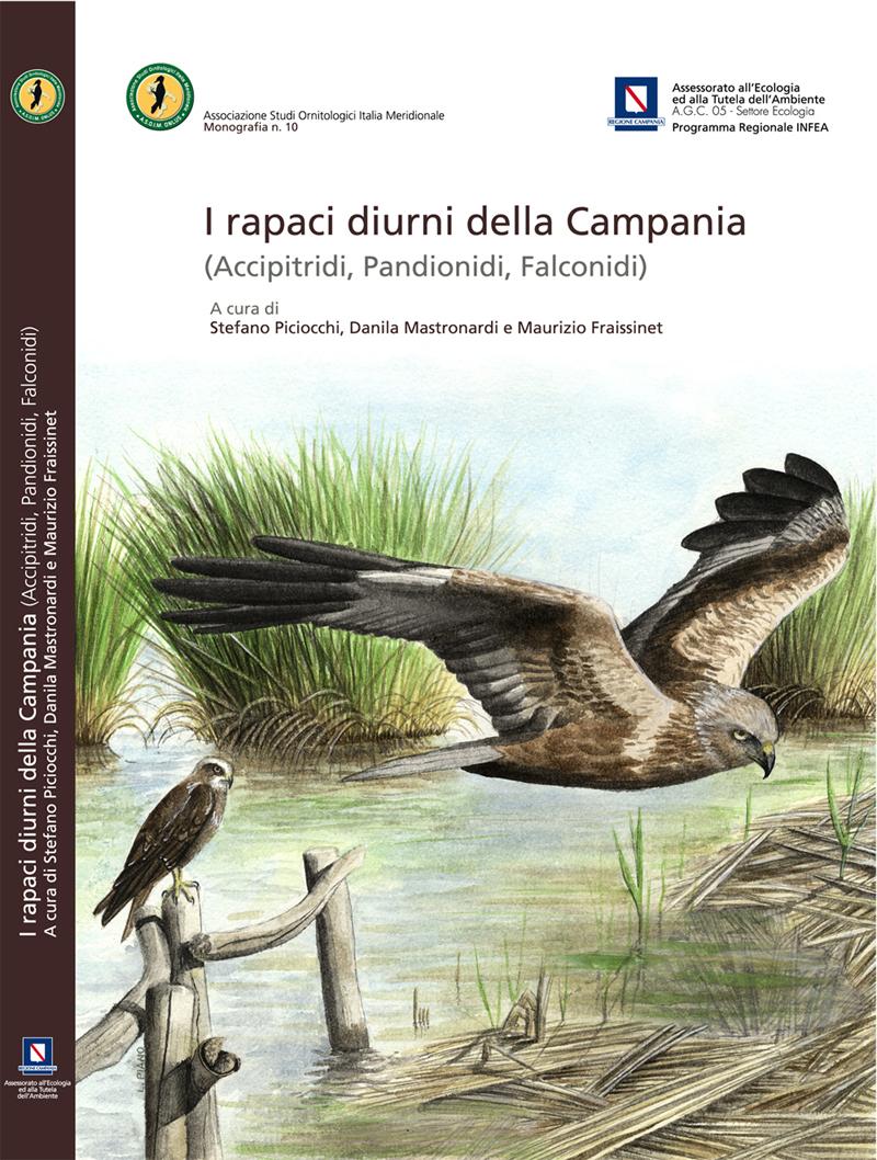 Un libro su Accipitridi, Pantionidi, Falconidi