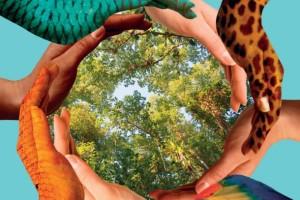 """La biodiversità è un """"mondo"""" meraviglioso"""